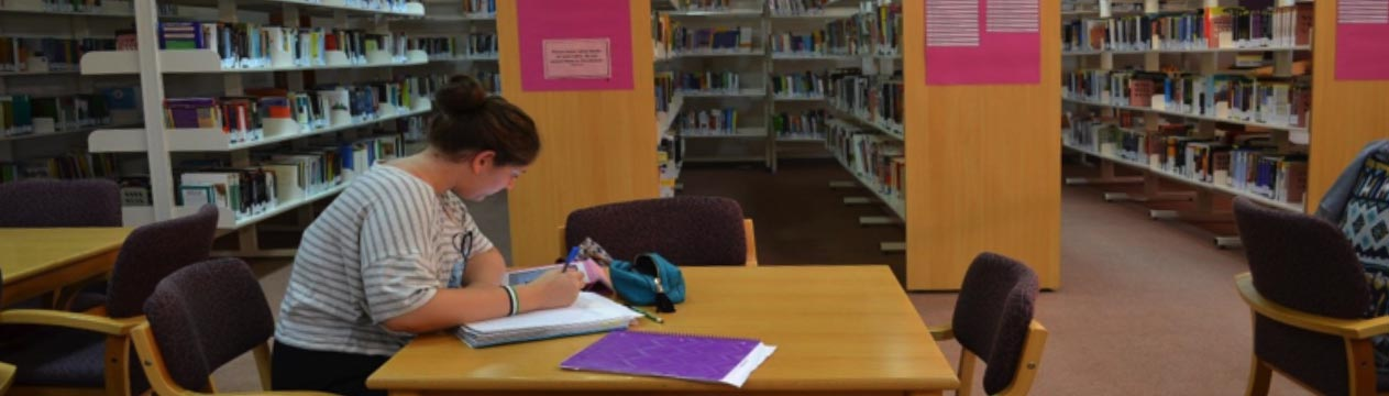 Library Silent Zone